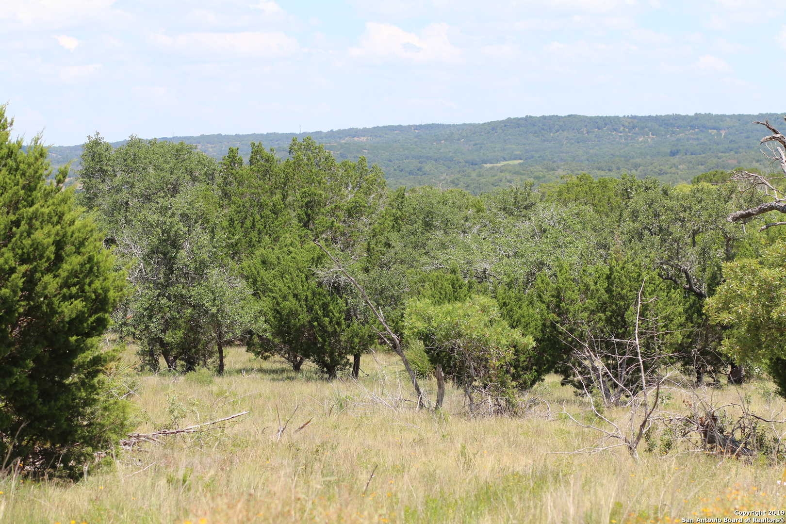 Lot 13 Lipian Apache Run, Blanco, TX, 78606